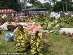 cameroun_marche bananes.jpg