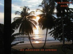 cameroun-littoral1.jpg